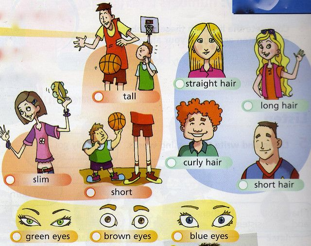 The child s learning of english morphology