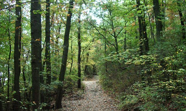 Best Places to Go Hiking in Southeast Michigan - Metro Parent - September 2013 - Detroit, MI