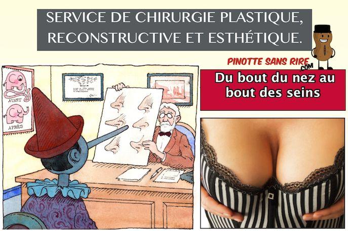 Service de chirurgie plastique, reconstructive et esthétique. Du bout du nez au bout des seins
