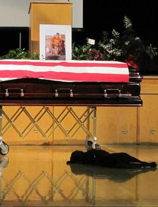 Hawkeye the dog, lies on the floor next to the casket of his owner, U.S. Navy SEAL Petty Officer Jon Tumilson, who was killed in a helicopter crash in Afghanistan. RIP JT <3