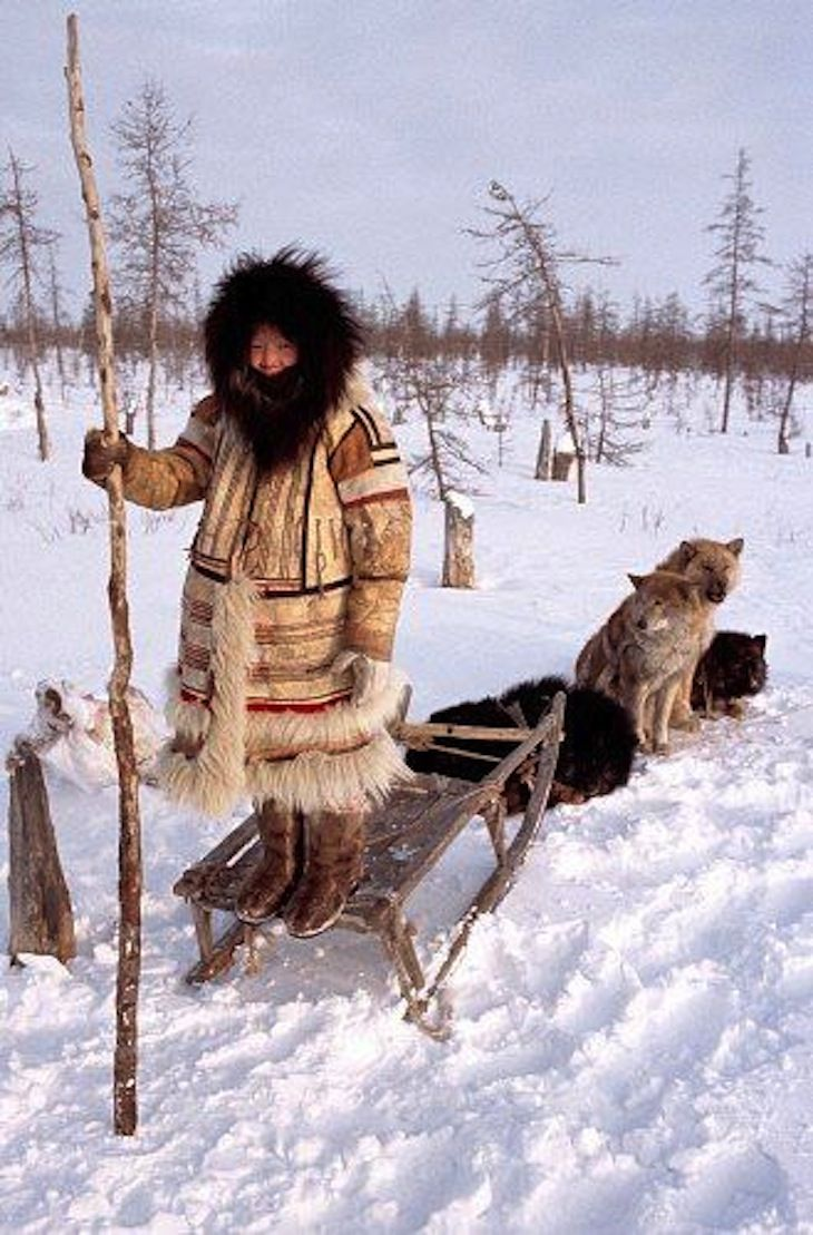 The Nganasans are indigenous people of Siberia. Living on the Taymyr Peninsula by the Arctic Ocean, they are the northernmost of the Samoyedic peoples. There are signs of early Nganasans from around 500 AD. Traditionally they led a nomadic existence following the herds of wild reindeer on their seasonal migrations up and down the Taymyr Peninsula. Today the population of the  is only about 830 but most of the traditional life of the people has disappeared.