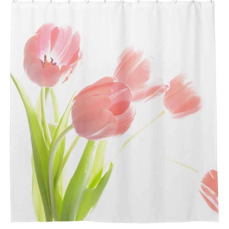 Pink Tulip Flower Shower Curtian Shower Curtain Pink Tulips