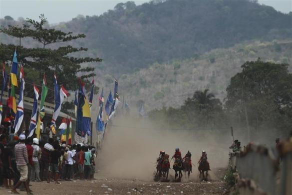 Child jockeys race their horses at a racetrack outside Bima, Indonesia, November 18, 2012.  REUTERS/Beawiharta