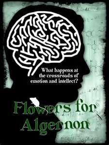 Flowers for Algernon unit/lesson/activities
