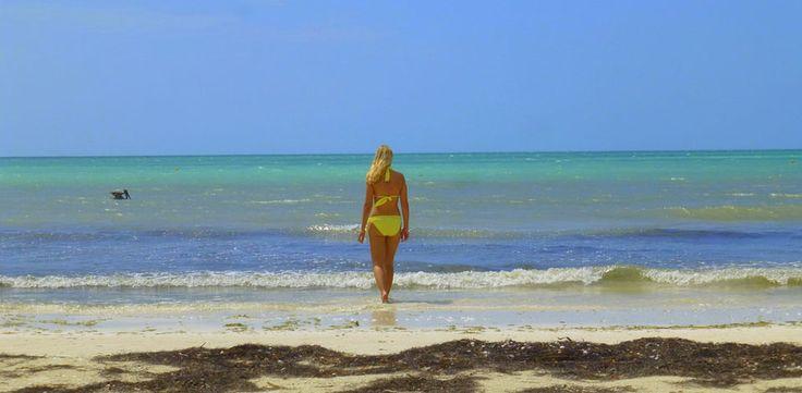 ¿Estás pensando en un viaje a México para descansar? Isla Holbox ofrece esa oportunidad en conexión con la naturaleza. Averigua cómo llegar y dónde ir aquí: http://www.rutas365.com/es-mexico-isla-holbox-atractivos-turisticos/