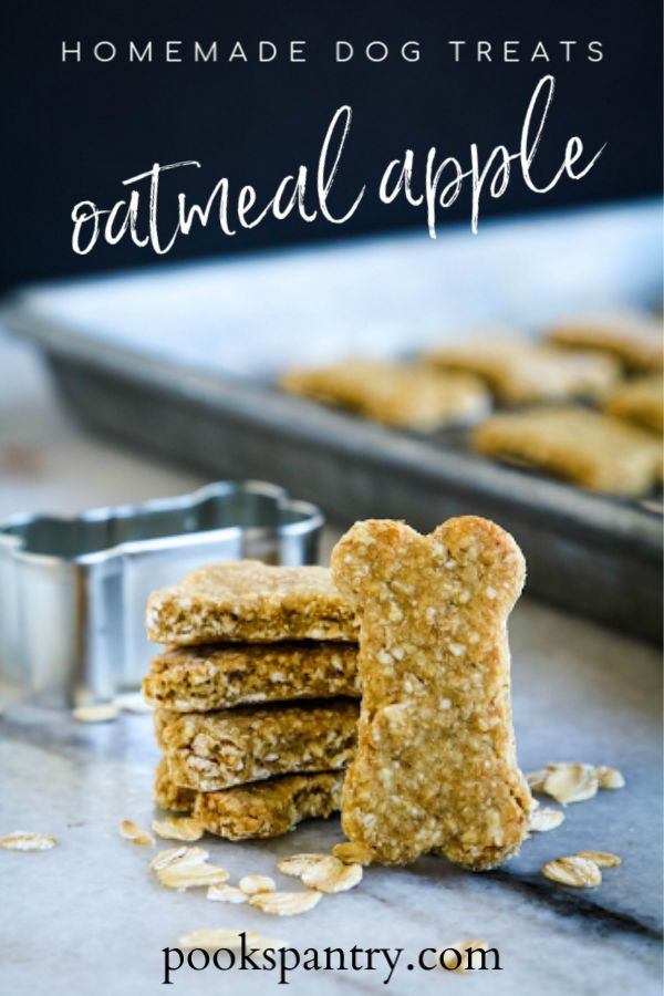 Homemade Dog Treats With Rolled Oats Recipe Dog Cookie Recipes