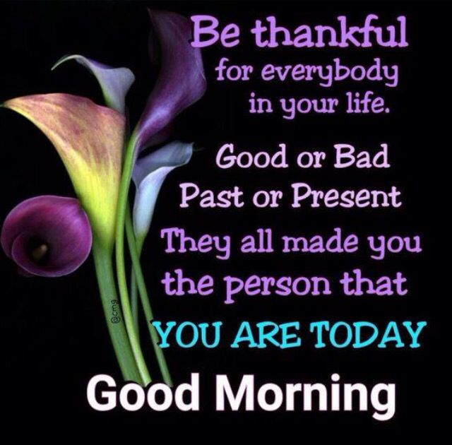Good Morning Beautiful You Facebook : Best images about good morning afternoon and evening