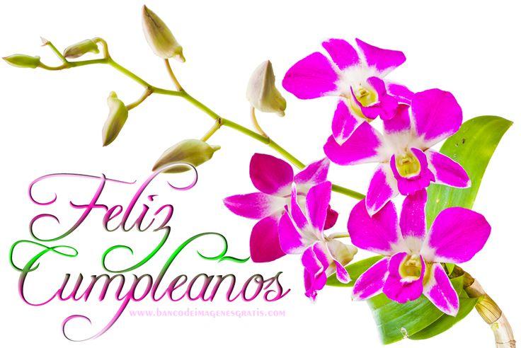 Imagenes De Cumpleaños De Flores En Hd Gratis Para Whatsapp 9 para WhatsApp en HD