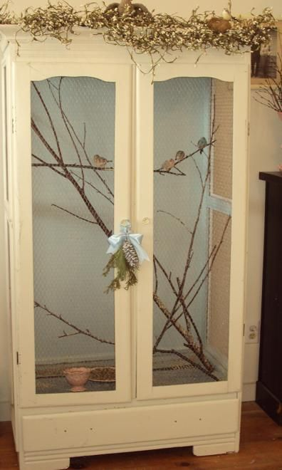 Finches! If I ever get birds, I'm totally doing this!!