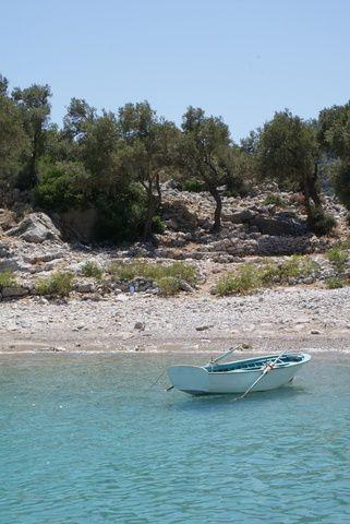 Boat on a virgin bay