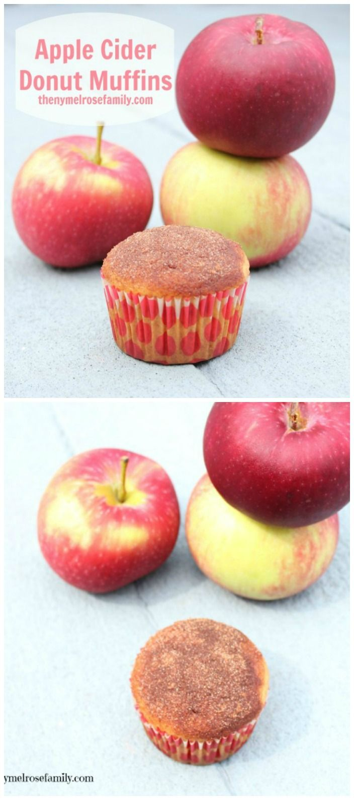 Apple Cider Donut Muffins  www.thenymelrosefamily.com #muffins #applerecipe
