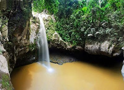 PERGIPEDIA  - Air Terjun Jembatan Batu Di Halmahera Utara Yang Unik Dan Mengesankan . Hutan yang ...