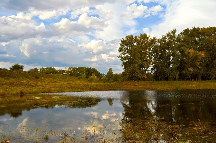 Jezioro, Drzewa, Łąka, Jesień, Niebo, Chmury, Odbicie