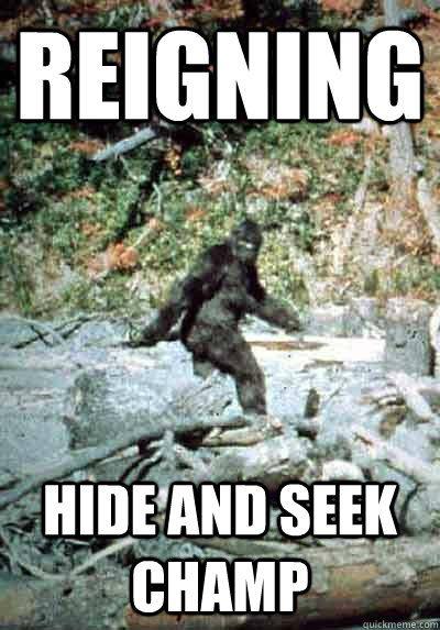 67aa2aae sasquatch- the hide and seek champion | Funny! | Lord of the rings, Bigfoot,  Bigfoot sightings