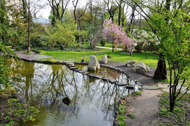 Füvészkert Botanical Garden #Budapest #Hungary #Europe