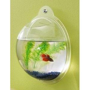 Wall Mount Fish Bowl Aquarium Tank Beta Goldfish