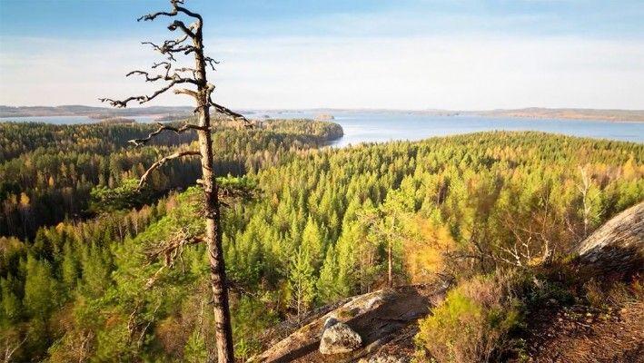 La Finlande, une nature paisible