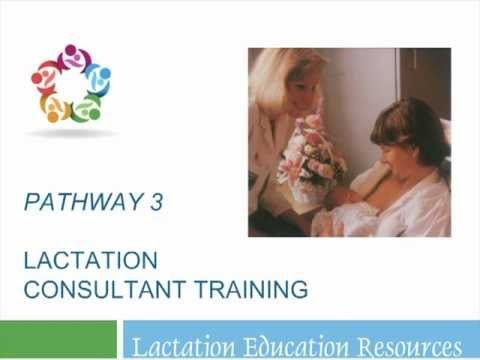 vergie hughes rn ms ibclc and program director of lactation education resources explains the - Certified Lactation Consultant Sample Resume