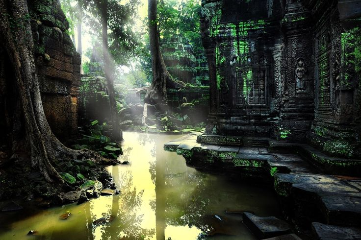 ... dming loves swamps and ruins the possibilities are endless and slimy