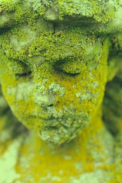 moss covered antique garden statue