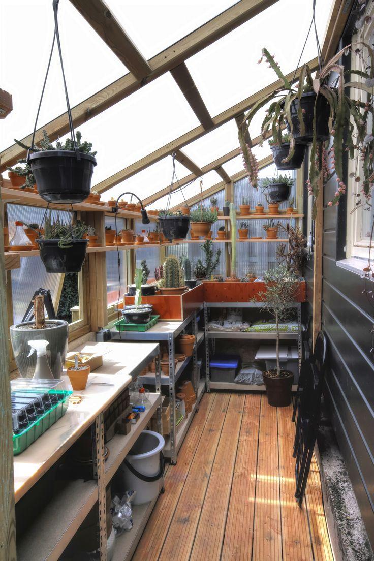 My Little Diy Leanto Greenhouse