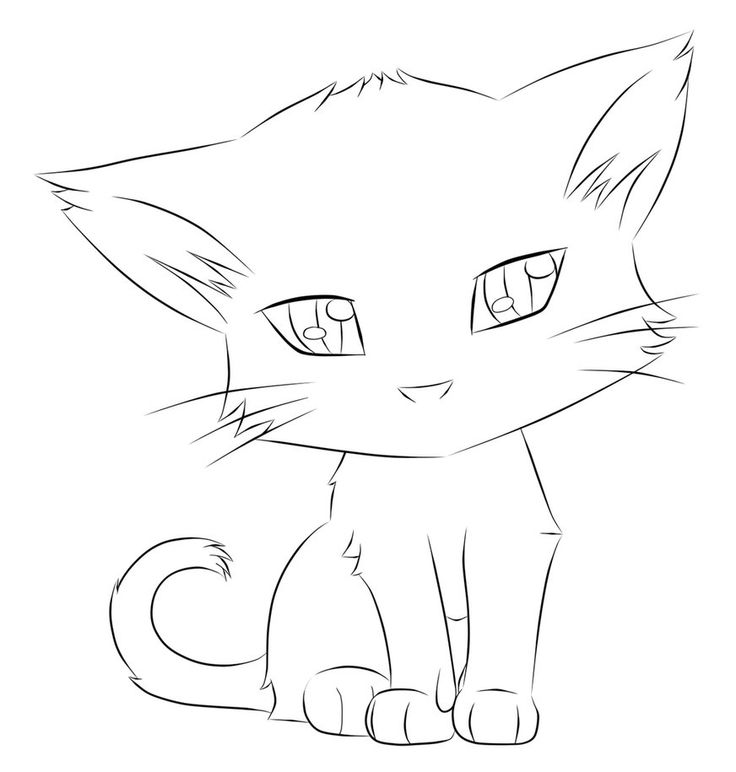Картинки котов для срисовки легкие