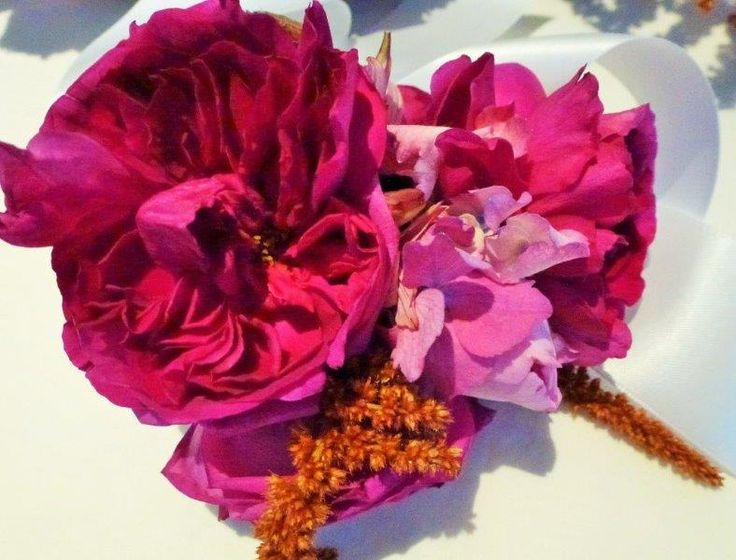 Rose hydrangea echinacea corsage