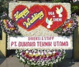 Toko Bunga Rawa Terate Jakarta Timur - http://www.tokojualbungapapan.com/toko-bunga-rawa-terate-jakarta-timur/  Visit http://www.tokojualbungapapan.com to more information!