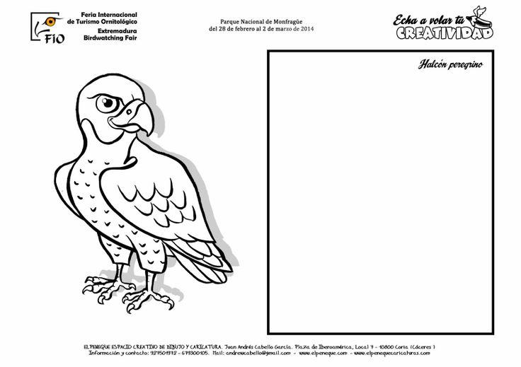 Mejores 27 imágenes de aves en Pinterest   Para dibujar, Colorear y ...