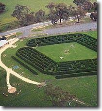 Avenel Maze in Seymour