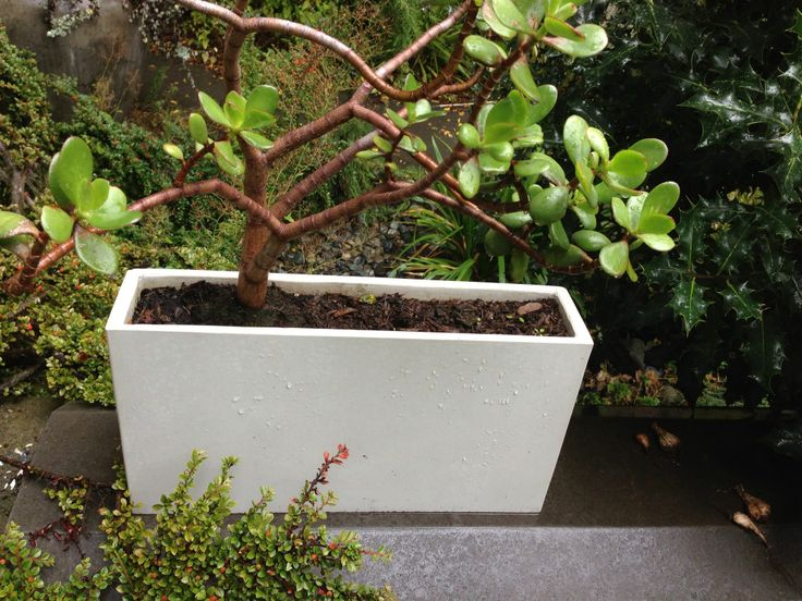 white uhpc planter by szolyd.com ductal