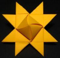 Stjernesol; variation af den klassiske julestjerne.