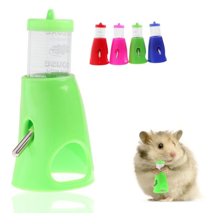 Delight eShop 2 in 1 80ML Hamster Water Bottle Holder Dispenser With Base Hut Small Pet Nest ** You can find out more details at the link of the image. (This is an affiliate link and I receive a commission for the sales)
