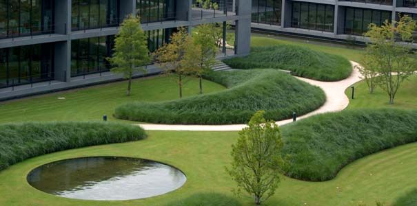 Grasses and organic form. Designed by Wirtz, Belgium