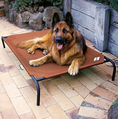 Elevated Dog Bed Extra Large Camping Cot Outdoor Indoor Cooling Mat Steel Frame