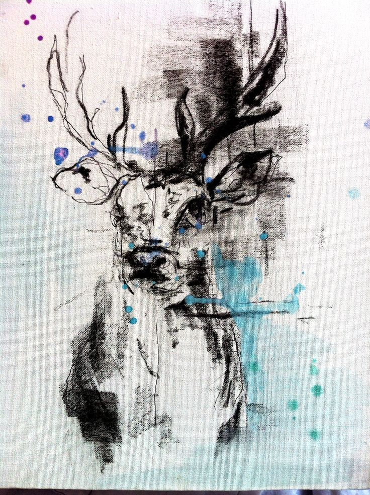 Stag Head Charcoal Watercolours #art #painting KatyJadeDobsonArt