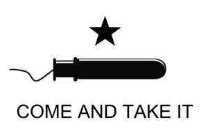 Texas Officially Loses It, Bans Tampons and Diabetic Supplies from Senate Chamber, Guns OK ~MUST READ~& While your there sign up to support HILLARY!