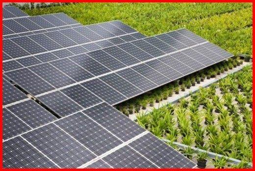 Renewable Solar Energy Solar Energy News Articles Choosing To Go Environmentally Friendly By Converting T Solar Panels Best Solar Panels Solar Energy Panels
