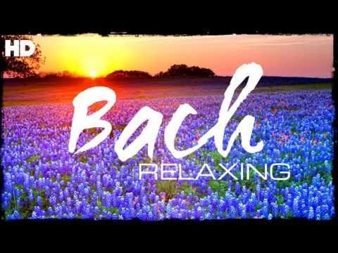 A legjobb pihentető klasszikus zene, amit valaha Bach - Pihenés Meditáció Fókusz olvasás - YouTube