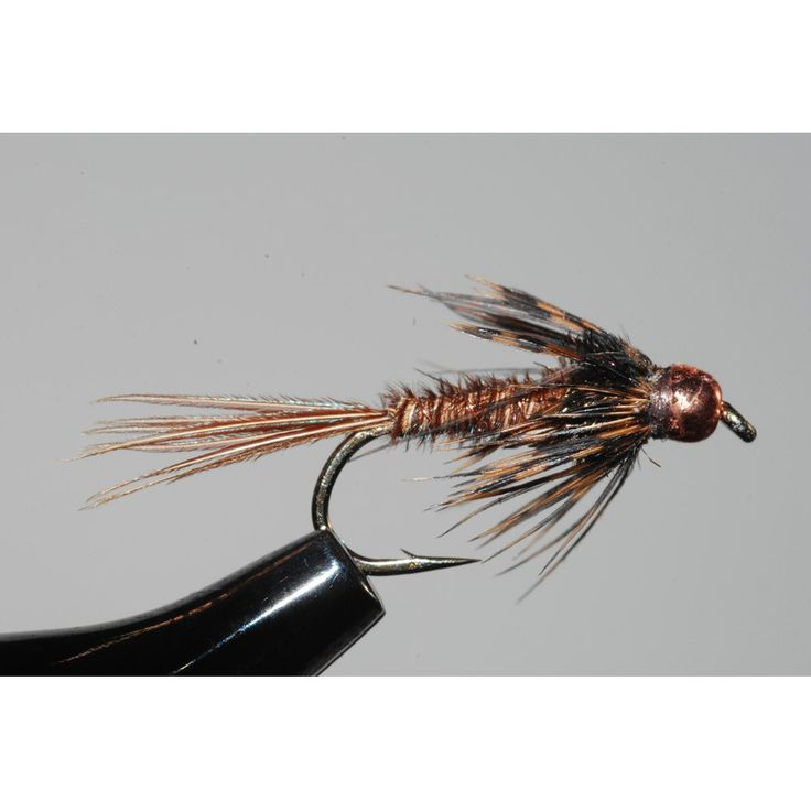 219 best images about flyfishing nymph generic on for Fly fishing nymphs
