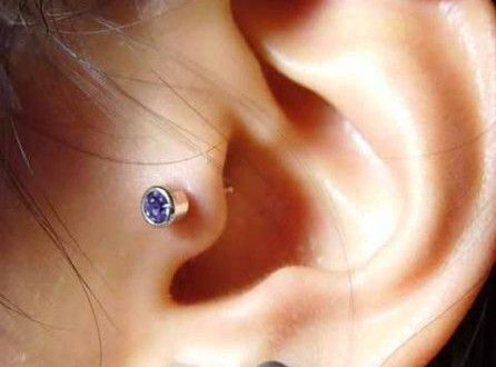 Tragus Piercing- All You Want to Know About Tragus Piercings | MyMagicMix