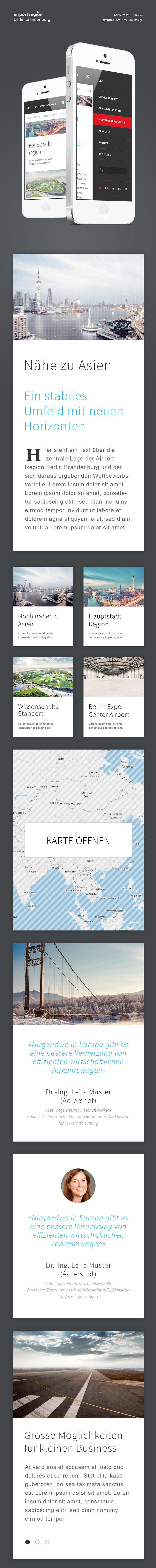 BER Airport Region Mobile - George Kvasnikov - Designer