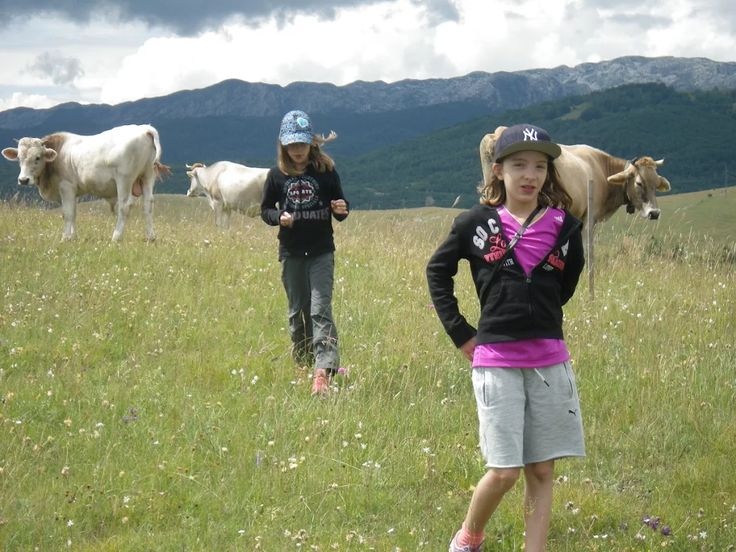 For city kids, getting up close to farm animals and wildlife is one of the best parts of an outdoor holiday like the Active Family Montenegro Holiday!