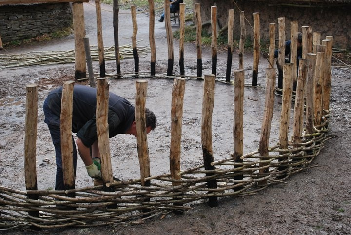 Hazel hurdles [www.youtube.com/watch?v=U08AiNxq17Q]. [www.museumwales.ac.uk] Here is a Celtic Village blog [www.museumwales.ac.uk/en/blog/?cat=431] where you can see the whole construction process from the 52 fire charred posts placed directly in the ground, a technique used by Tony, roundhouse builder [www.thatroundhouse.info/], through to the jointing at the apex of the roof and the beautiful thatching.