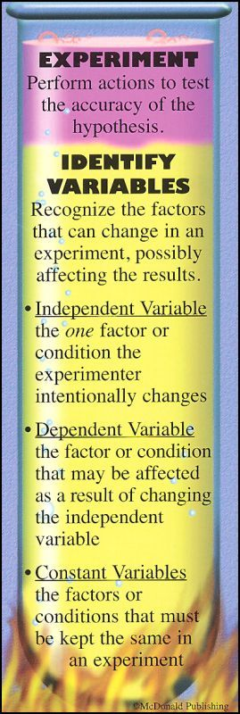 Science Process Skill Bookmark | Additional photo (inside page)