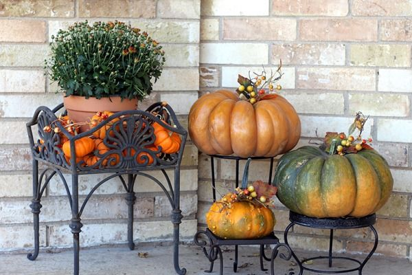 fall pumpkinsFall Pumpkin, Decor Ideas, Porches Plants Stands, Porches Decor, Fall Decor, Porches Pumpkin, Porches Ideas, Fall Porches, Front Porches