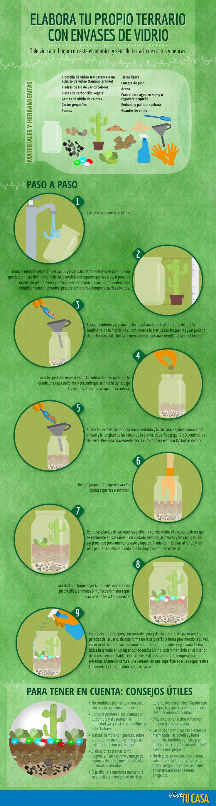 Elabora tu propio terrario con envases de vidrio . Te ayudamos a crear esta…