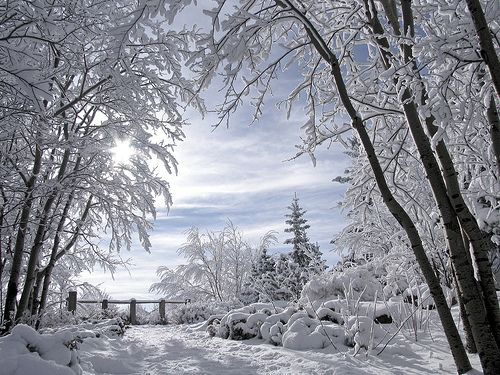 Winter Scenery, awesome.