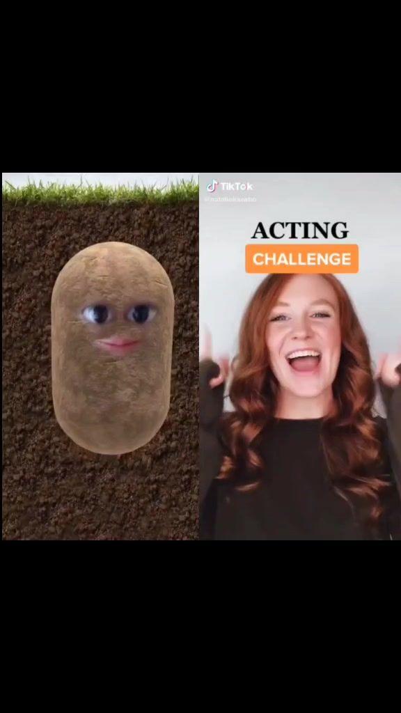 Pebble The Potato Pebble The Potato Tiktok Watch Pebble The Potato S Newest Tiktok Videos Di 2021