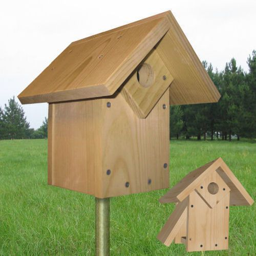 223 best images about birdhouses diy on pinterest pvc for Song bird house plans